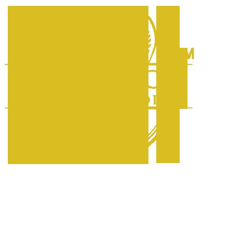 Esthetics Dental Studio Laboratory